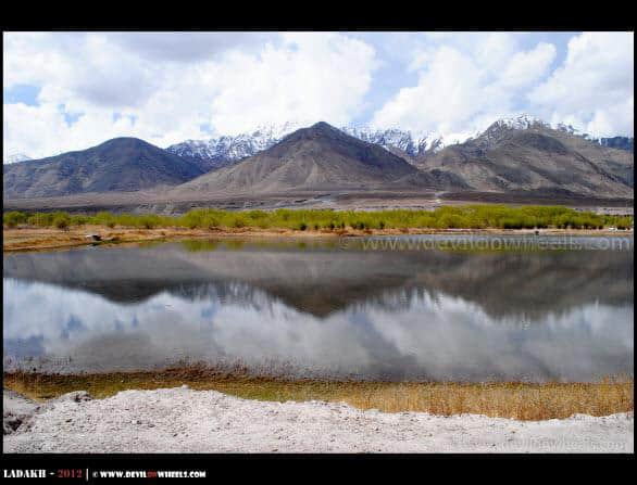 Lovely Reflections in Leh