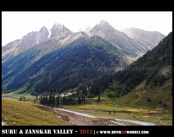 Green becomes Greener near Sonamarg on Srinagar - Kargil Highway