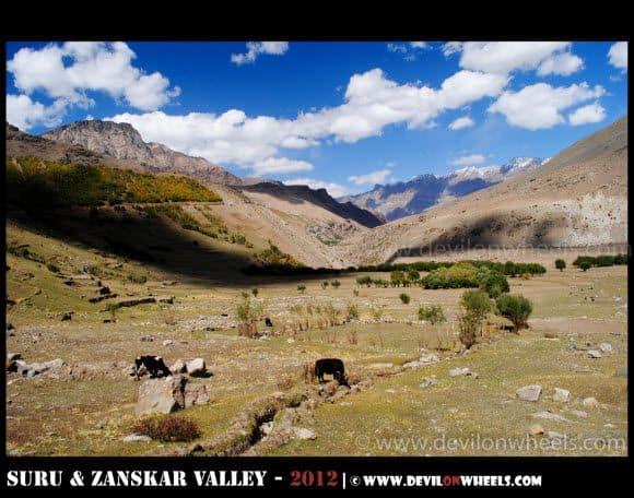 The Suru Valley - Wonderland
