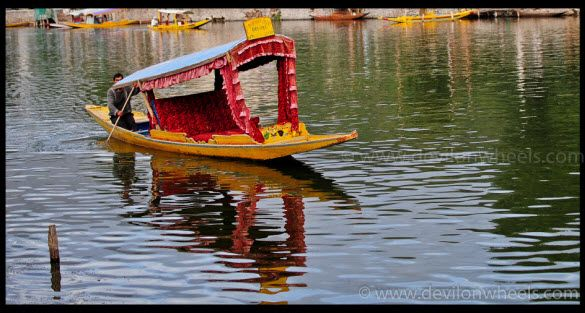 The Colorful Shikara at Dal Lake