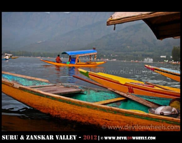 Colorful Shikaras Parked at Dal Lake