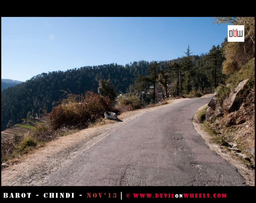 Roads leading to Chindi from Rohanda, Himachal