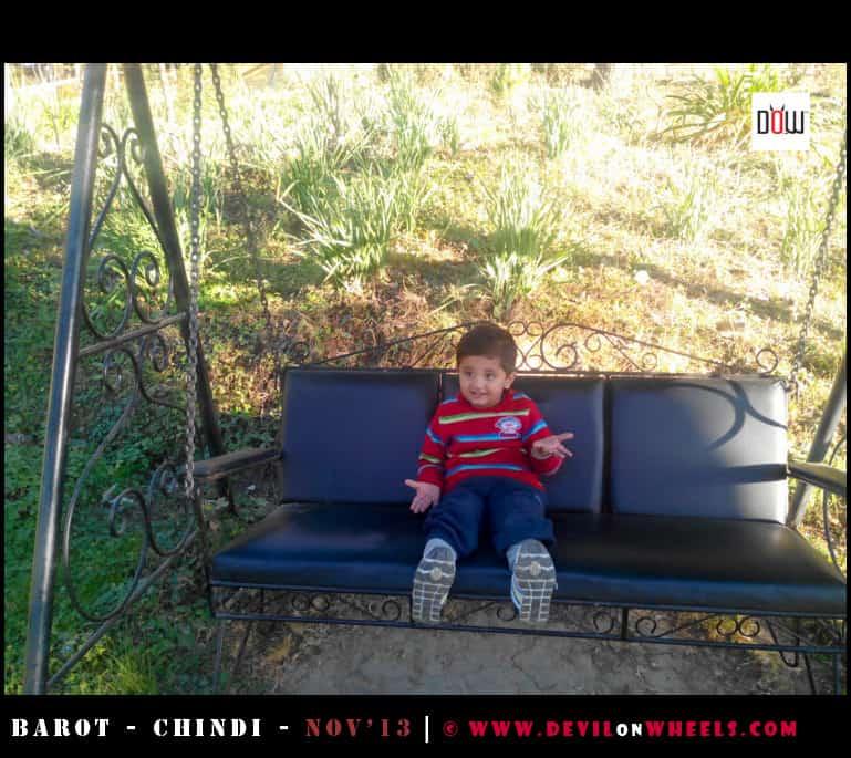 Junior Relaxing in the Garden of Hotel Mamleshwar, Chindi - Himachal