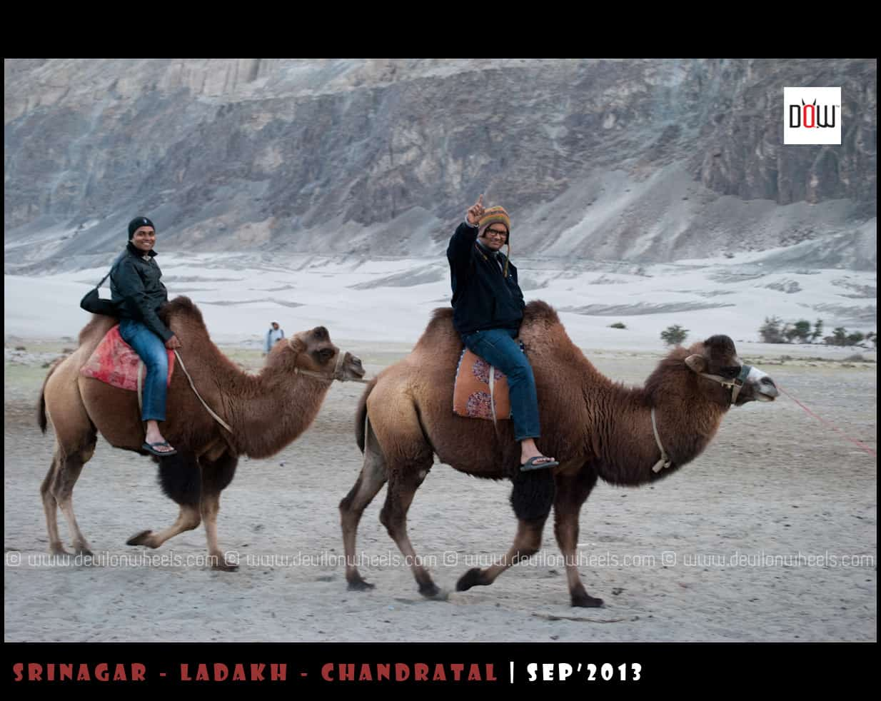 DoW Gang Completing their Double Humped Camel Safari at Hunder