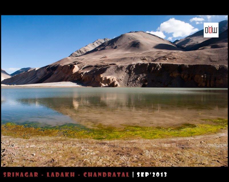 Chagar Tso Lake on the way to Pangong Tso