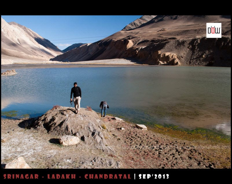Chagar Tso Lake on the way to Pangong Tso