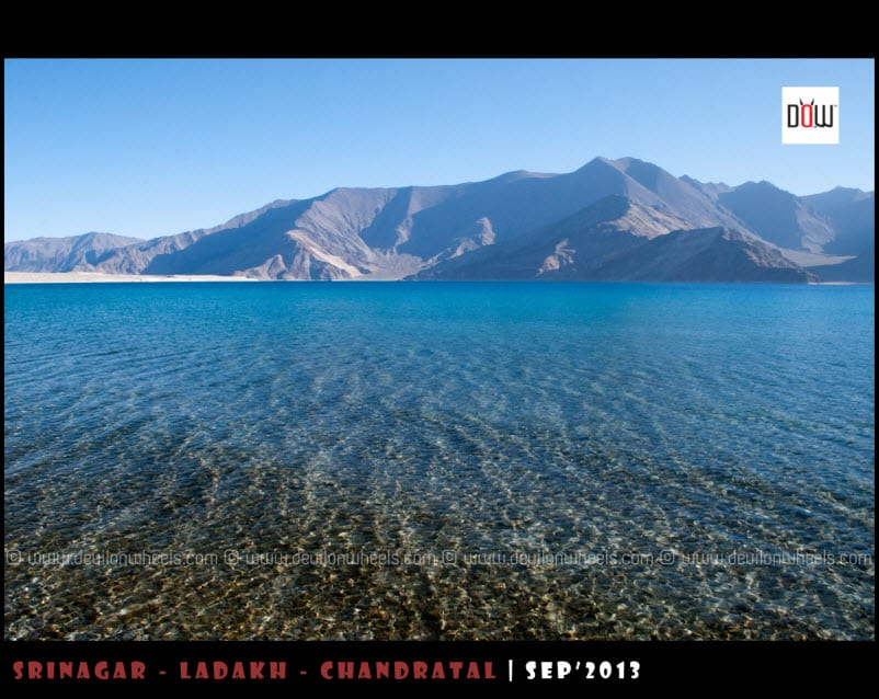 Magical Blues of Pangong Tso