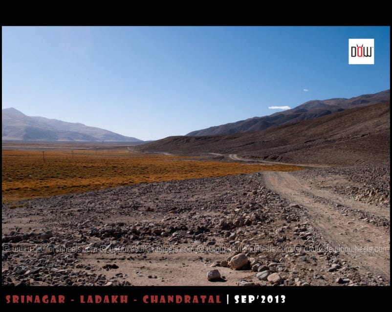 Pangong Tso to Tso Moriri Direct Route