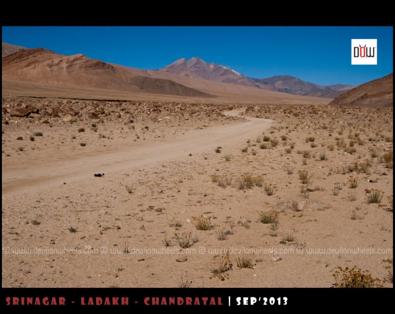 Snaky Roads leading to Kyon Tso from Hanle
