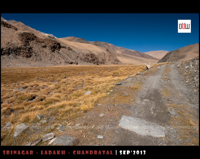 The Road Ahead towards Kyon Tso from Hanle