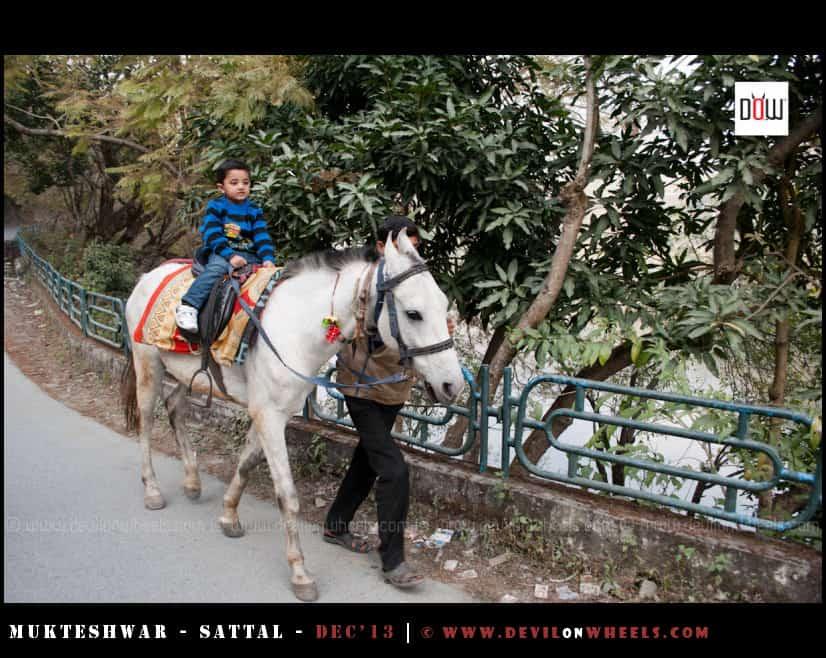 Junior riding a horse