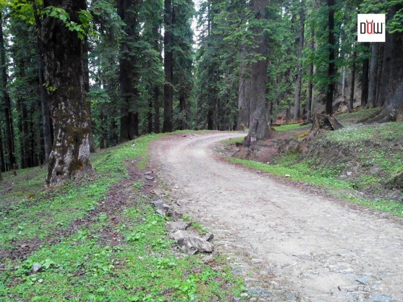 Road to Chansal Pass ahead of Larot Village