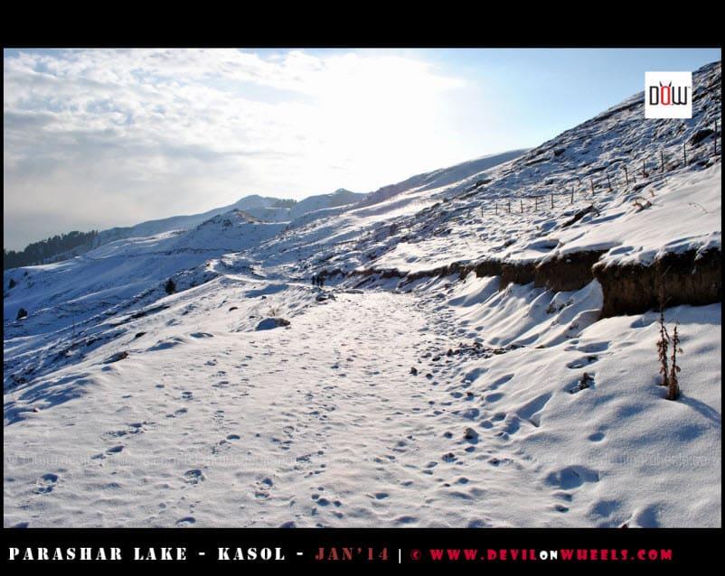 The Snow Path Ahead