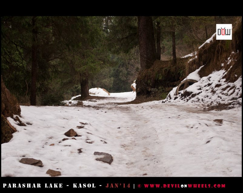 The Snow Filled Road to Prashar Lake