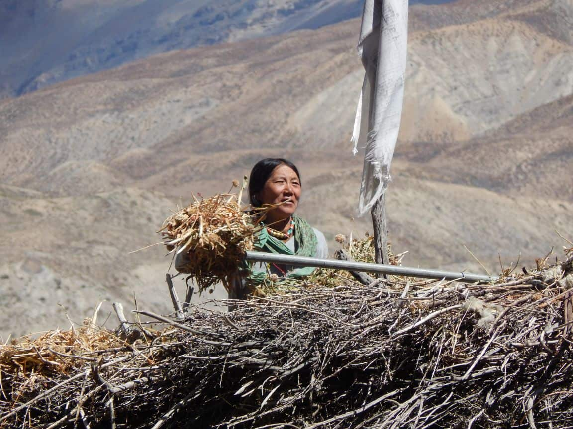 Daily Life at Mane Village, Spiti Valley