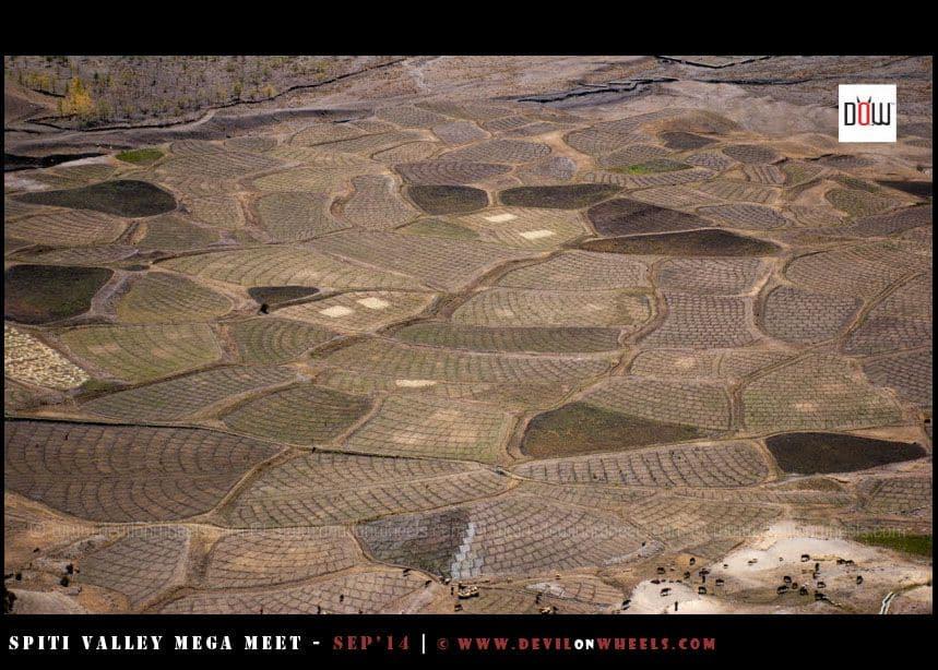 Well designed farm fields