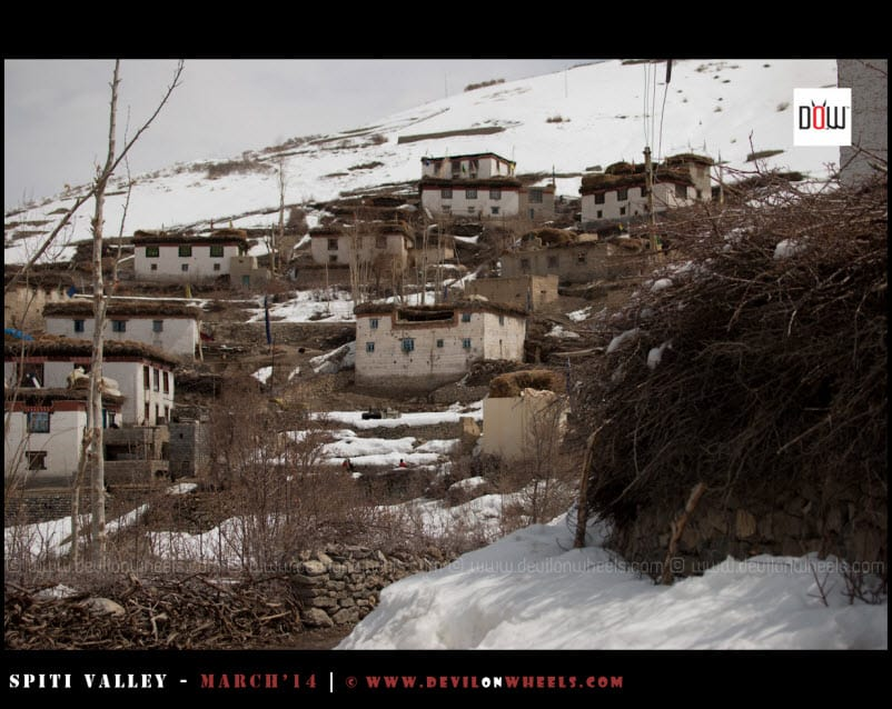 Old Fashioned Houses of Spiti at Lhalung