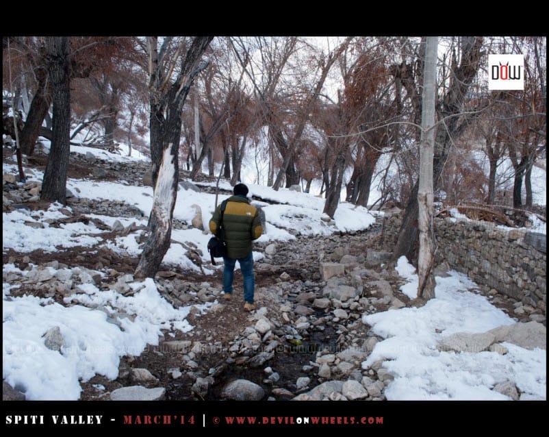 The Trail to Frozen Nako Lake