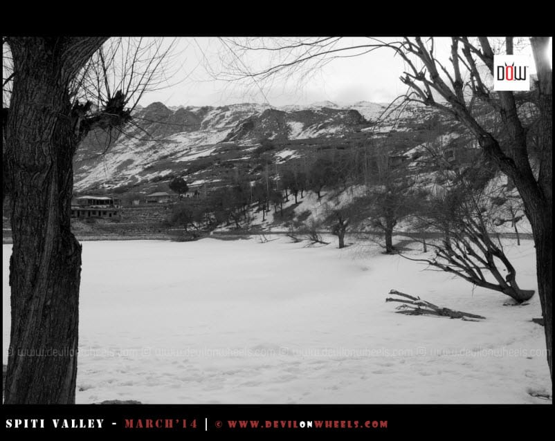 The Frozen Nako Lake - in Two Tones
