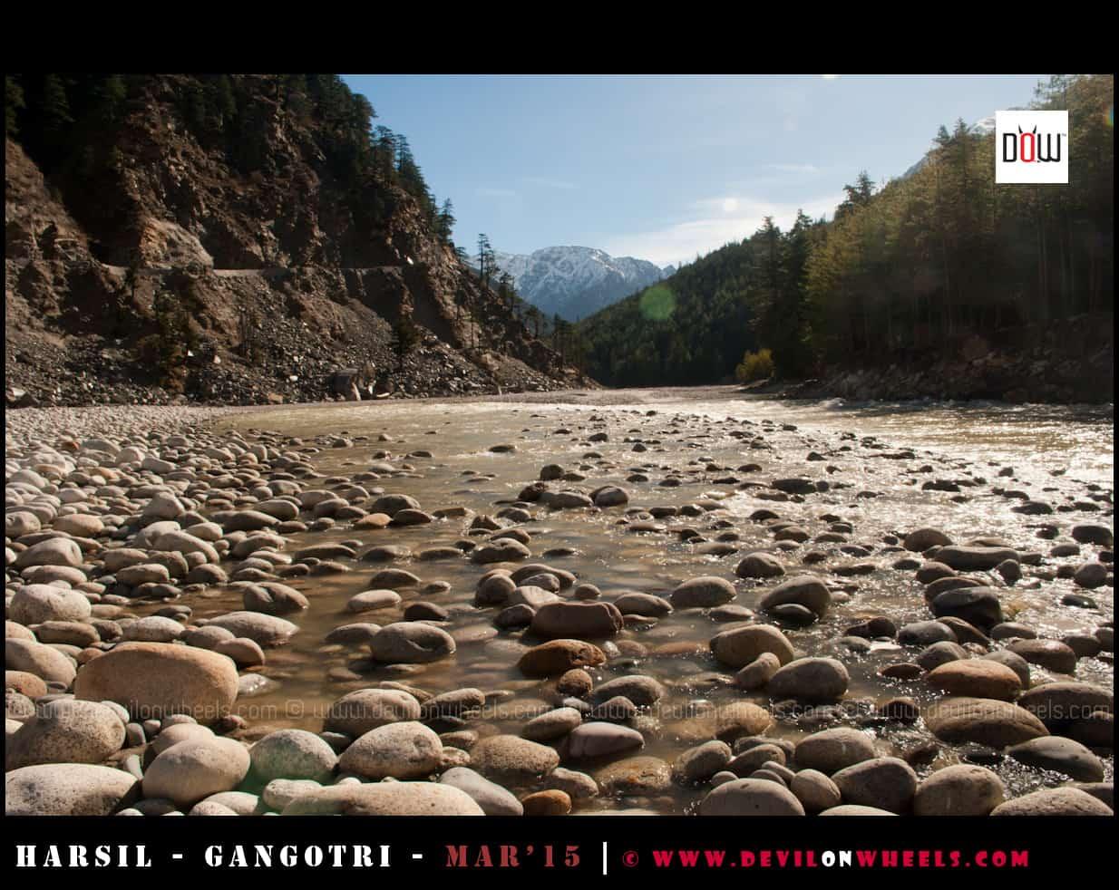 Bhagirathi River at Harsil