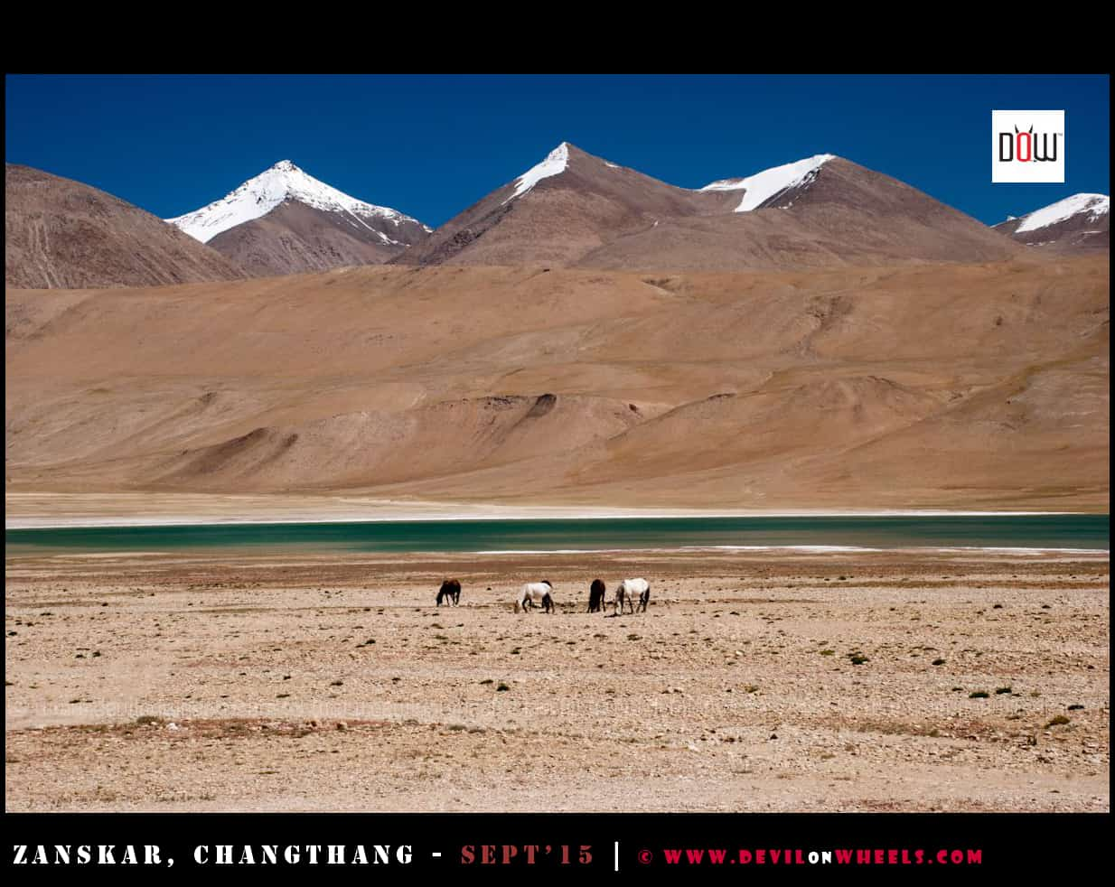 A dream landscape near Kiagar Tso