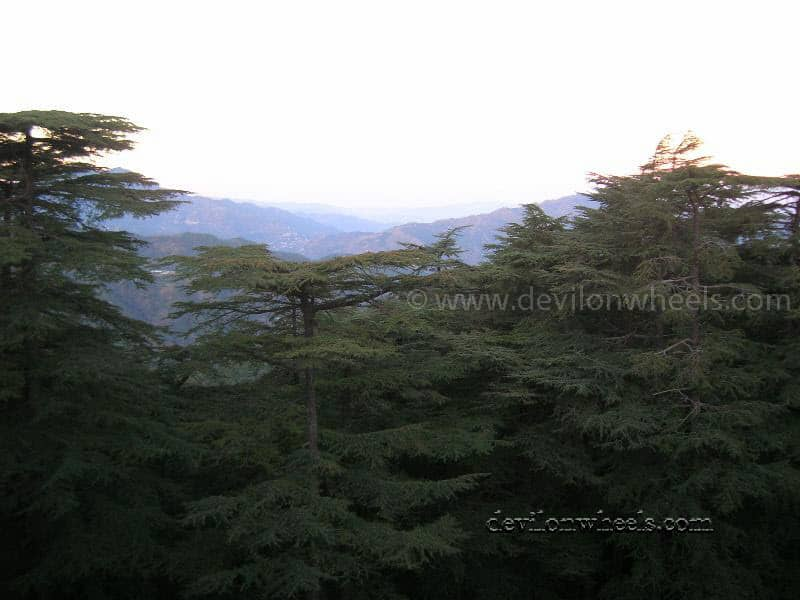 Views of Chail